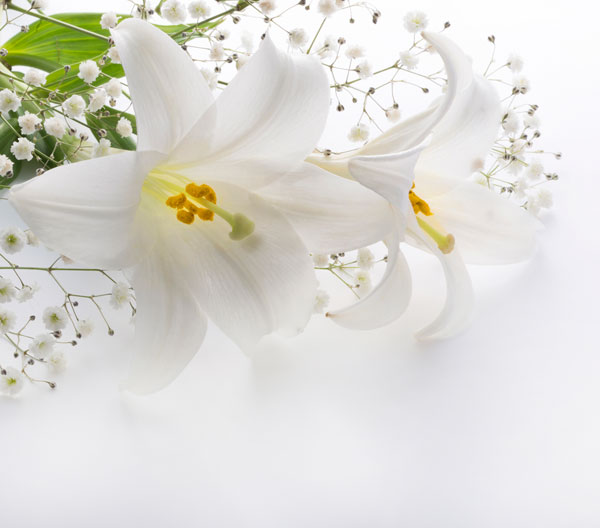 henderson NV burial services
